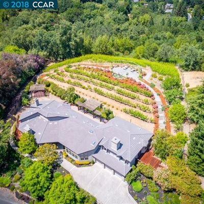 unique vineyard opportunity luxury properties