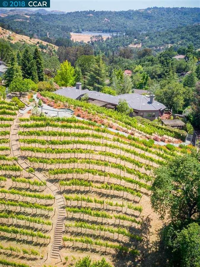 Mansions unique vineyard opportunity