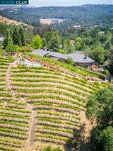 Luxury properties unique vineyard opportunity