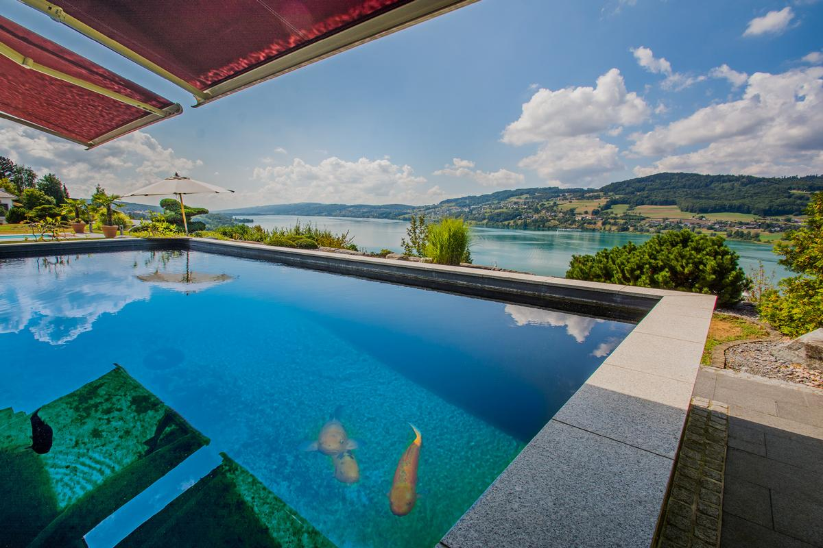 Spectacular Estate with Pool and amazing lake view luxury real estate