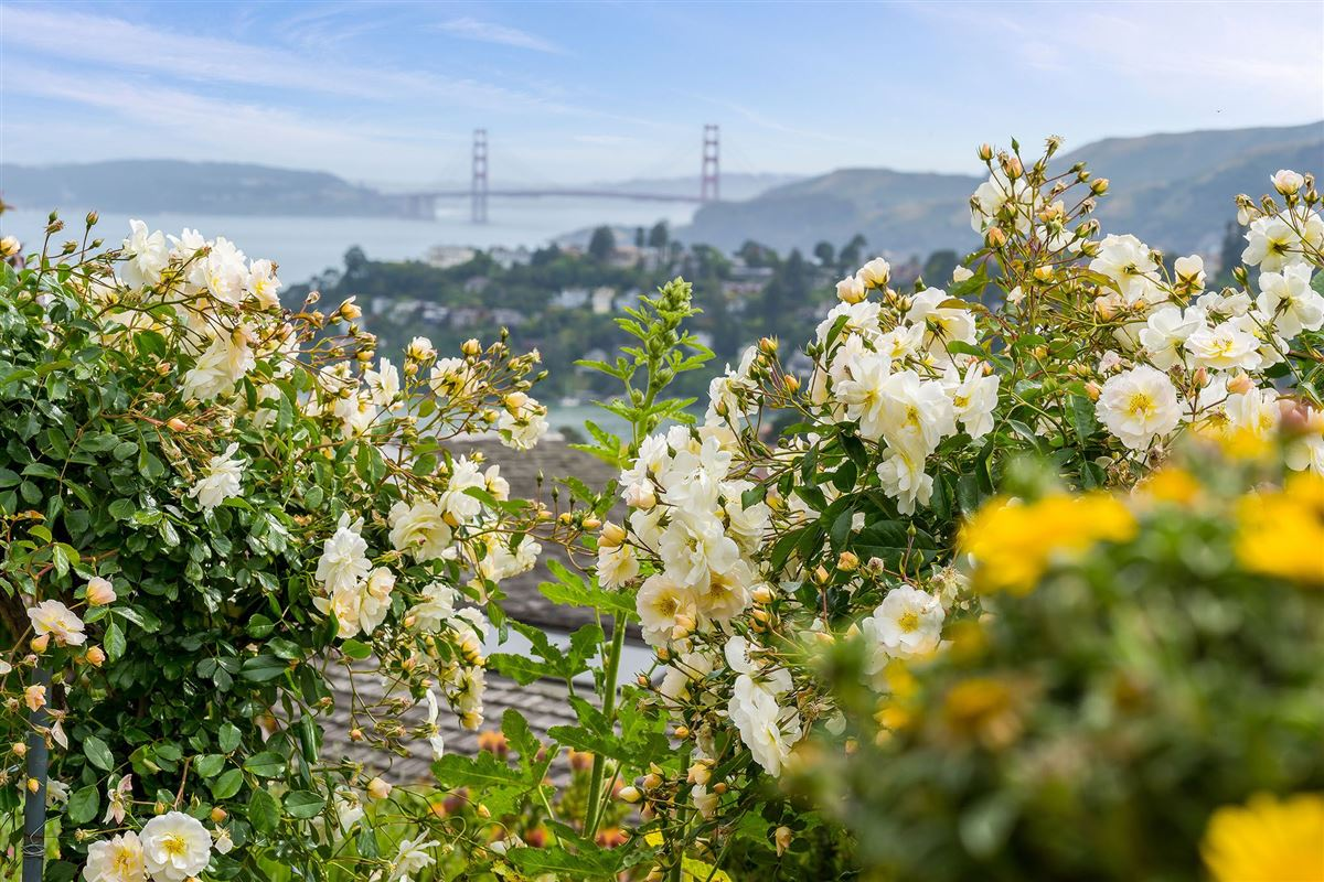 unrivaled views of the San Francisco Bay mansions