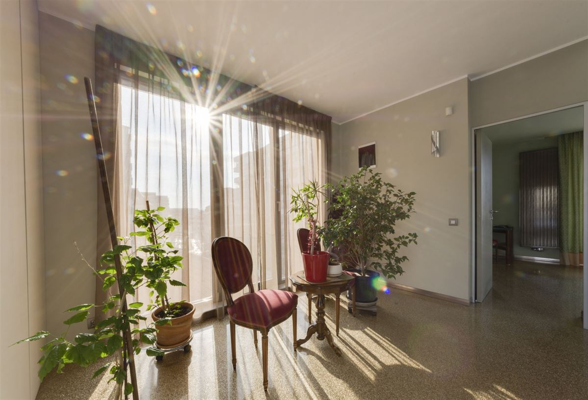 Hollywood in the heart of Bucharest luxury real estate