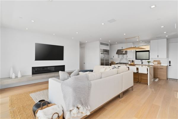 Luxury properties Meticulously designed contemporary duplex in Crown Point