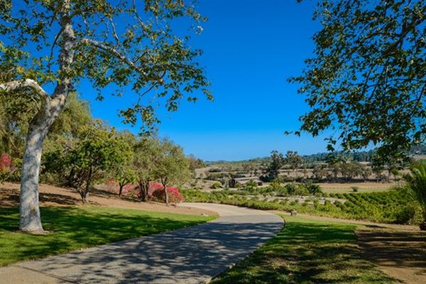 Luxury real estate one of the most expansive tracts in coveted Rancho Santa Fe