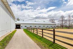 Luxury homes in BOUTIQUE EQUESTRIAN FARM