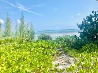 Luxury real estate An extraordinary beach front lot