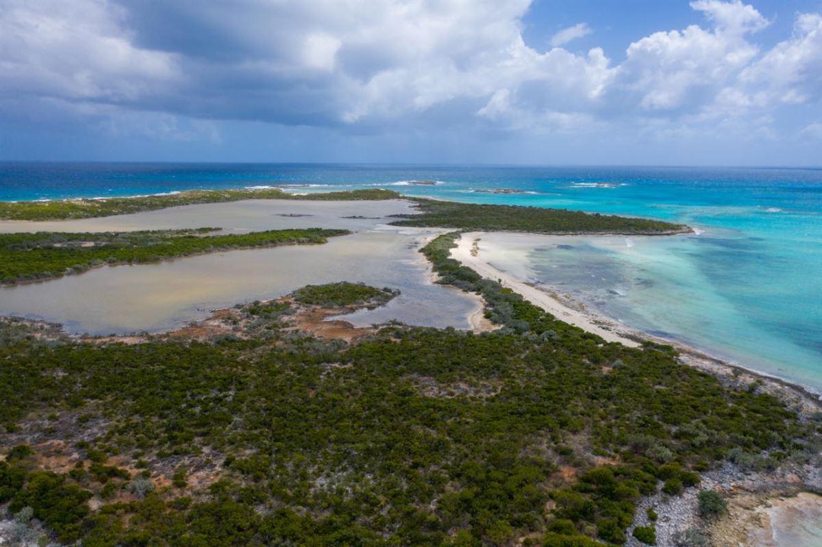 Luxury homes st. andrews island