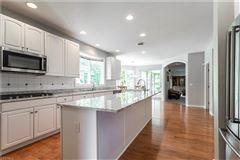 Luxury properties palatial avon lake residence
