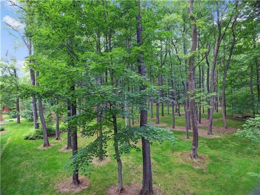 Luxury real estate luxury log home on 69 exceptional wooded acres