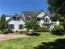 Luxury real estate lakefront custom transitional colonial