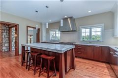 Luxury homes in newly remodeled home on eight private acres