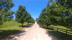 106 acre horse property luxury properties