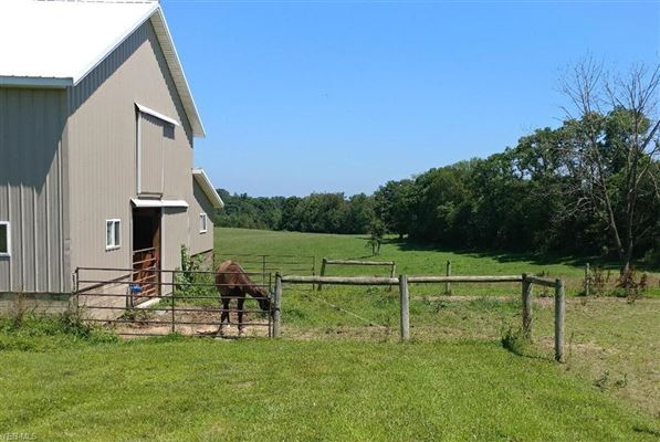 Mansions in 106 acre horse property