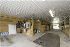 Luxury real estate Immaculate Equestrian Training Facility