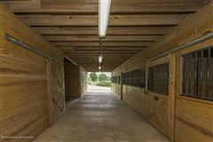 Luxury properties Immaculate Equestrian Training Facility