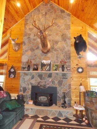 Mansions in custom log home on 119 acres