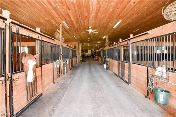 Luxury properties state-of-the-art Equestrian property