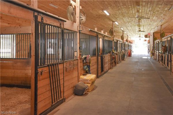 state-of-the-art Equestrian property mansions