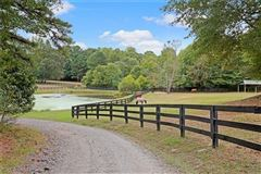 Luxury properties beautifully wooded property