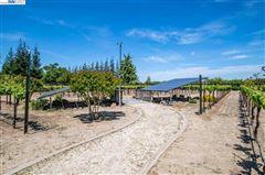 Luxury homes Immaculate Gated Vineyard Estate