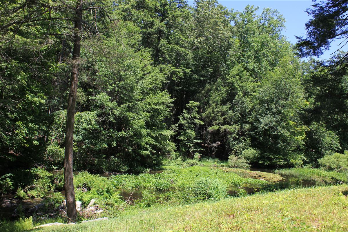 significant pristine acreage in Westchester County luxury real estate