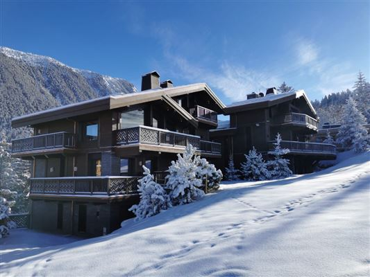 Luxury homes exceptional new chalet