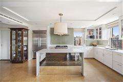 meticulously renovated penthouse duplex luxury properties