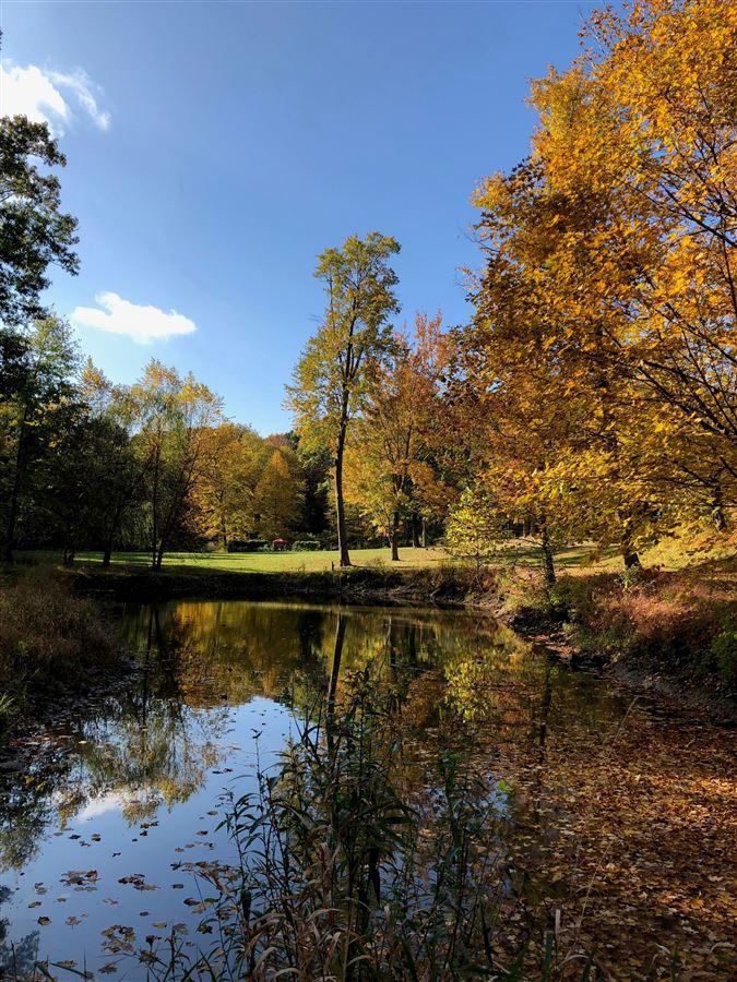 Luxury properties Rhinebeck Rental - Dutchess County