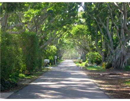 Tropical North Palm Beach Hideaway  luxury properties