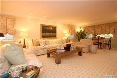 Spacious and beautiful center hall Colonial mansions