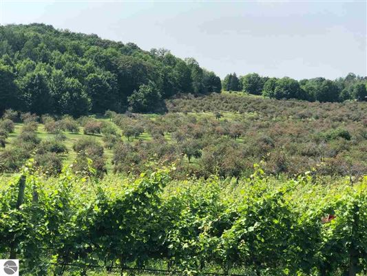 Paradise for Winery, Orchards and home luxury properties
