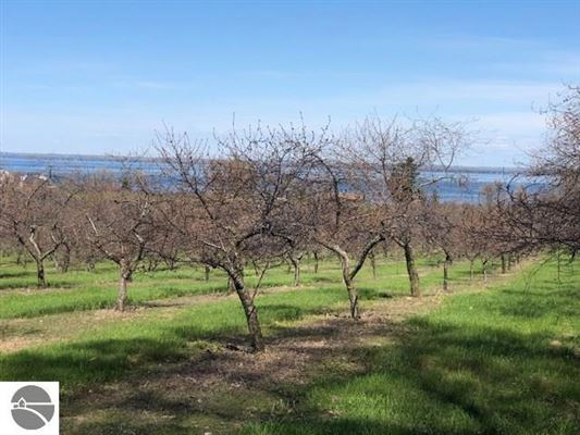 Luxury properties Paradise for Winery, Orchards and home