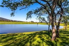 Luxury properties Diamond M Ranch