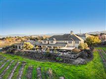 Luxury homes in Luxurious vineyard estate