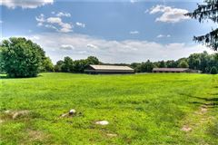 Luxury properties Incredible equine estate on 85-plus acres