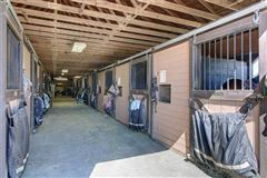 Incredible equine estate on 85-plus acres mansions