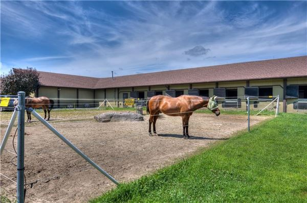 Luxury real estate Incredible equine estate on 85-plus acres