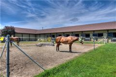 Luxury homes Incredible equine estate on 85-plus acres