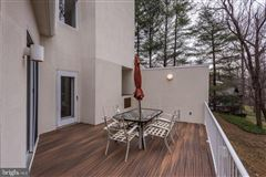 Luxury homes custom contemporary home on a private wooded lot
