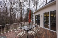 custom contemporary home on a private wooded lot luxury homes