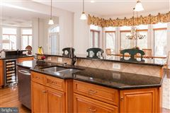 spectacular property in beautiful Leesburg luxury real estate