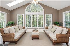 Luxury properties Luxurious and elegant estate