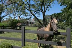 Mansions A remarkable Equestrian Estate