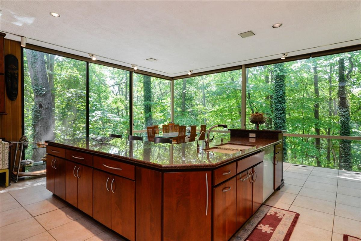 Mansions in wooded lot in the heart of Barton Hills