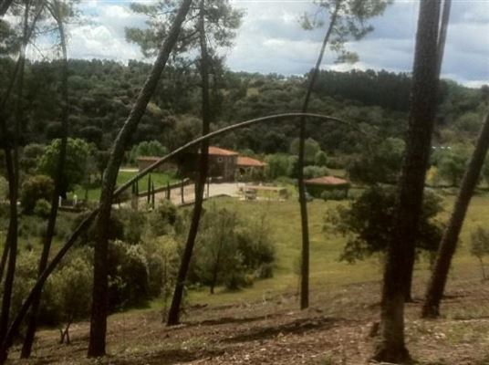 magnificent recreation estate luxury homes
