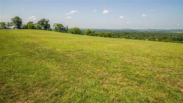 Luxury properties 51 rolling hillside acres