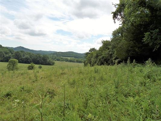 132 acres in bell buckle luxury properties