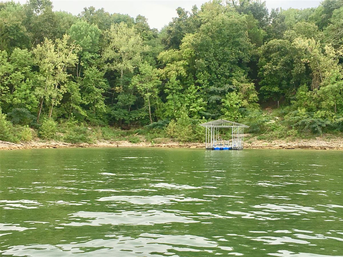 Luxury properties New private dock on Center Hill Lake