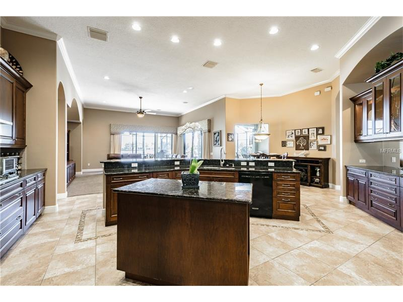 Executive Tampa Home luxury real estate