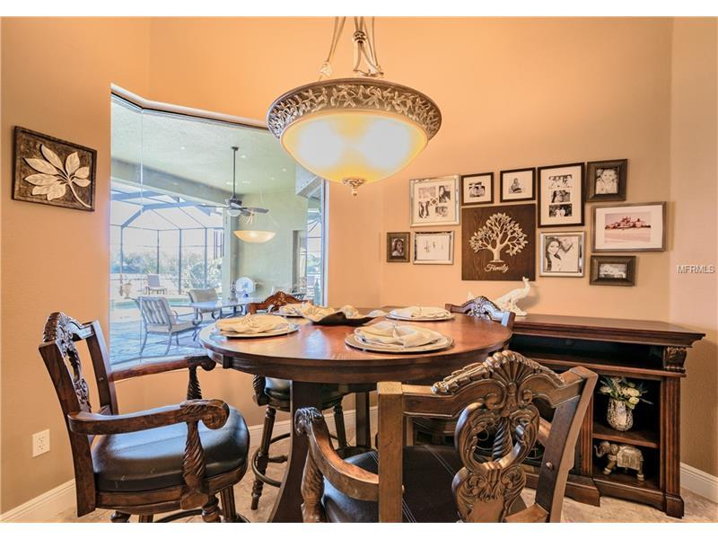 Luxury properties Executive Tampa Home